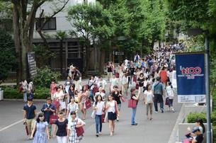 Sophia University Students